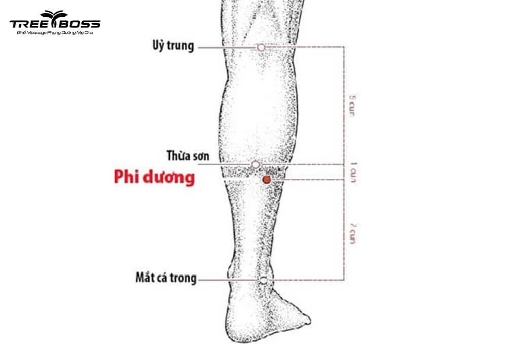 đau nhức bắp chân sau sinh
